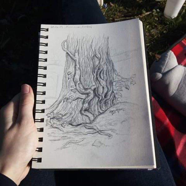 Zeichnung   © Katharina Strauß